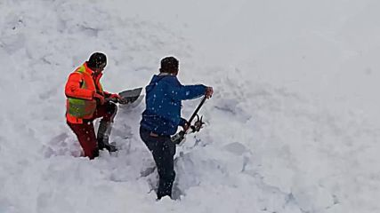 Watch as rail workers rescue goat buried under snow in Austria