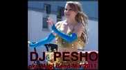 ork. Magi Bend- Mix 2011- dj.pesho.riben