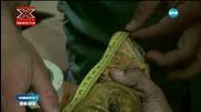 Арестуваха мексиканец за контрабанда на... игуани