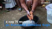 Бум на холера в Нигерия и кафене за дакели