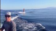 Стадо делфини застига момиче в морето