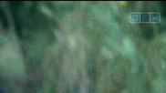 Бягство от затвора S02e08 [2 част] Bg Audio