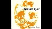 Brutale Haie - skinhead power