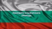 Рекордите в българската природа