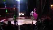 ,вариете,шоу,кабаре,цирк Magic-9