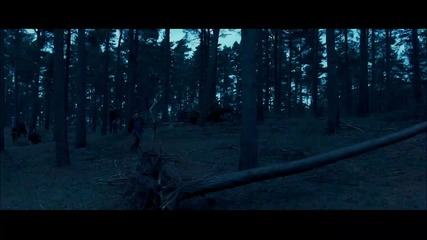 Harry Potter and the Deathly Hallows Trailer Hq