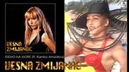 Vesna Zmijanac - Idemo na more ft. Rambo Amadeus - (Audio 1994)