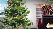 Какво не знаем за Коледа