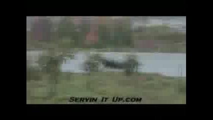 Servin It Up 5 Трейлър