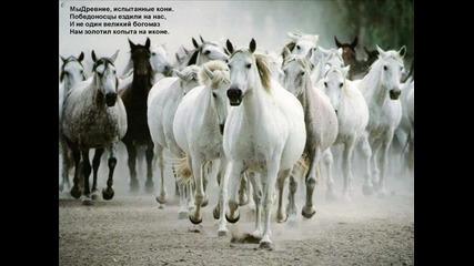 Краси Търнава - Седем бели коня