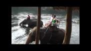 Kanchanaburi - Elephant Trekking, Erawan Falls, Death Railway