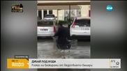 Българка в Дубай: Никога не съм виждала такова бедствие