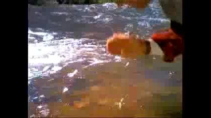 На Това Му Се Вика Чиста Вода :d