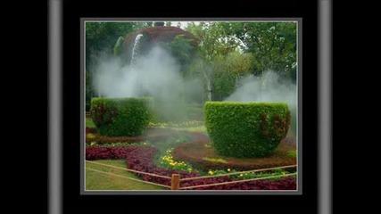 Ботаническата Градина В Монреал