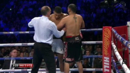 Anthony Joshua vs Eric Molina 10.12.2016 Hd
