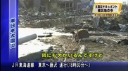 Японско куче не иска да напусне раненият си приятел