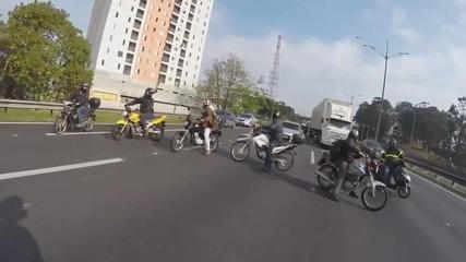 Мотористи спират движението, за да спасят куче
