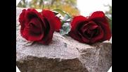 Червени Рози За Вас Мадам..