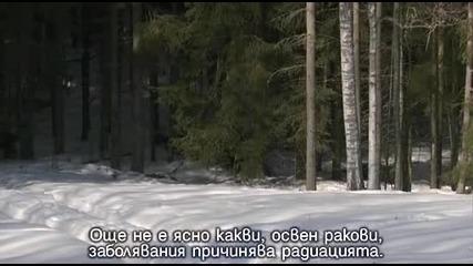 Чернобил: Живот в