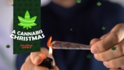 DIY for the High: Make your joints extra festive