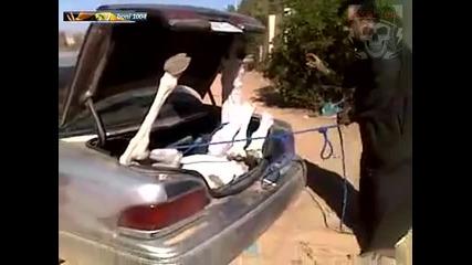 Такова нещо не сте виждали - превоз на камила по арабски