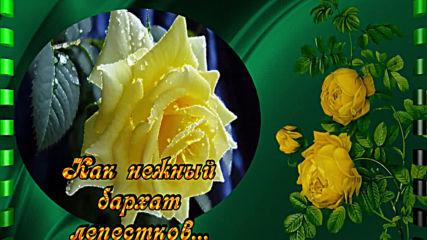 Пожелание. Пусть день наполнится цветами.