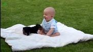 Кучета се закачат с бебета - Компилация 2014