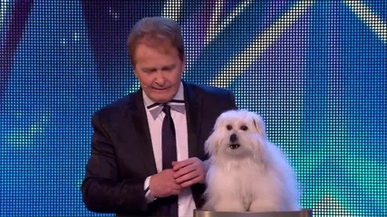 Говорещото куче Уенди - Britain's Got Talent 2015