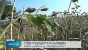 Какви са щетите след градушките във Врачанско