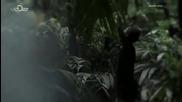 Bear Grylls: Escape from Hell S01e01 / Беър Грилс: Бягство от ада С01 Еп01