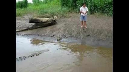 Екстремно хранене на крокодил.