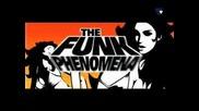 Armand Van Helden - The Phunk Phenomeno