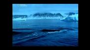 The walking whale Еволюция Ходещият кит. 4 Част
