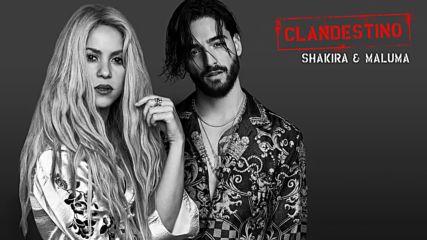 2018! Превод! Maluma y Shakira - Clandestino Audio + Текст