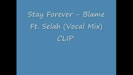 Blame - Stay Forever (vocal Mix )