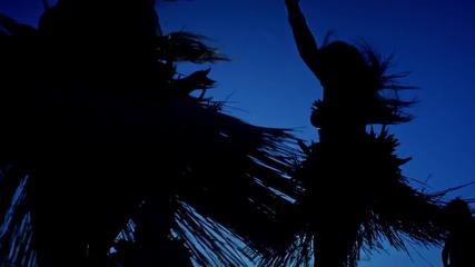 Tyga, Chris Brown ft Pia Mia - do it again (official music video)