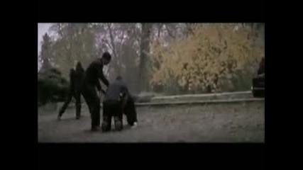 Rammstein - Haifisch [превод]