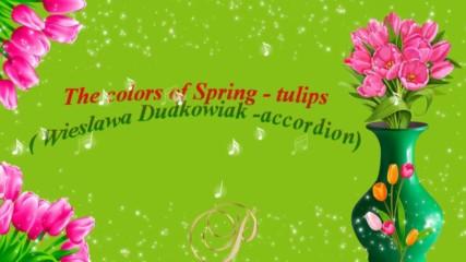 Цветовете на пролетта - лалета! ... ( Wieslawa Dudkowiak - accordion)
