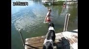 Това кученце много лошо се подхлъзна !