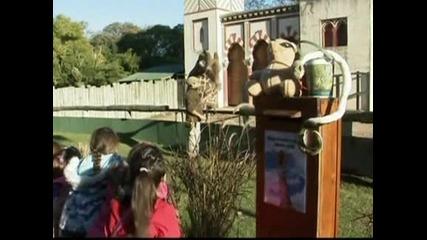 Женско жирафче се роди в зоопарка в Буенос Айрес