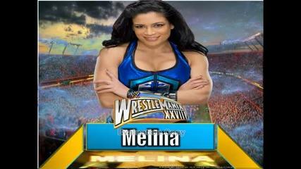 Wrestlemania 28 Match