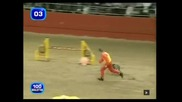 Най - бързото куче в света !