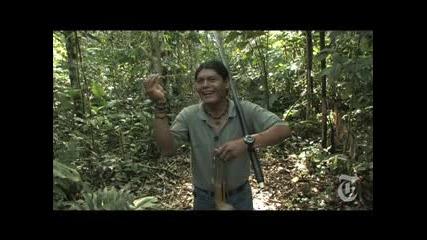 В Джунглата На Лов