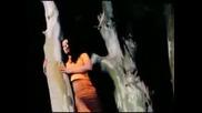 Antzela Dimitriou - Kane Stin Akri