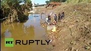 Дрон снима избягал след наводненията алигатор в Тбилиси