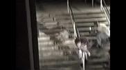 Bam Margera - Horrible Skateboarding Fall