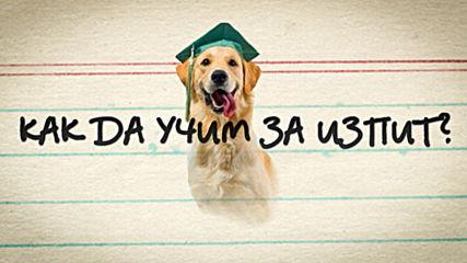 Как да учим за изпит в университет в България