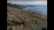 Gokhan Tepe - Ask Belasi