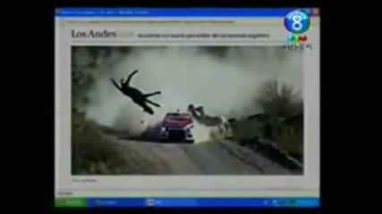 Рали кола удря кон с висока скорост!