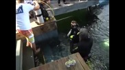 Двама университетски преподаватели от Тенеси прекараха 73 дни под вода